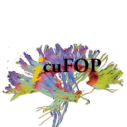 Logo ICUFOP
